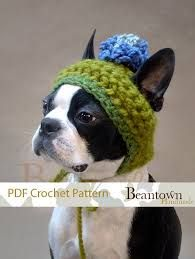 Image result for dog hat with ear holes free crochet pattern ... e0bfd1983aa