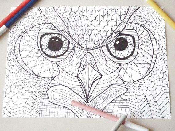 Owl head coloring page owl eyes kids adults instant download ...