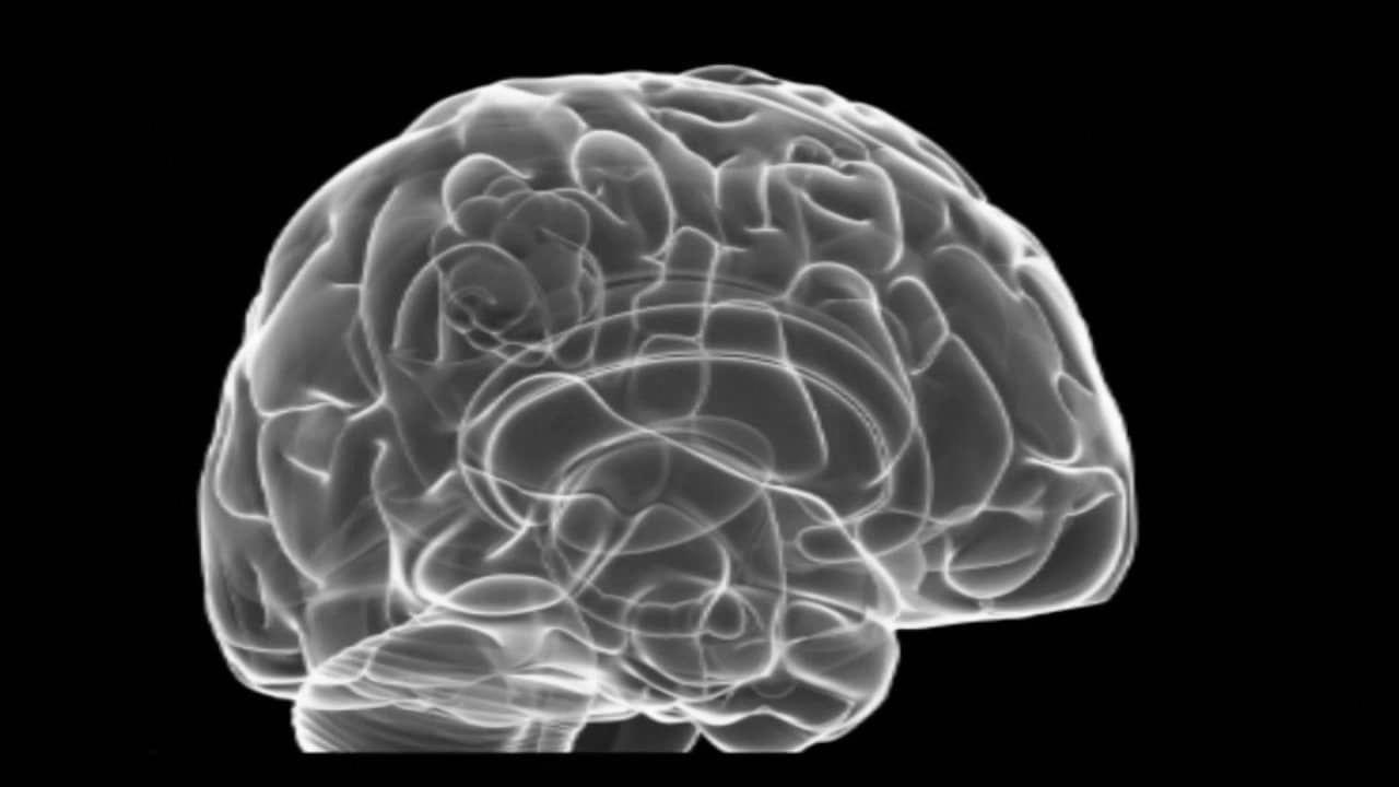 what helps with memory # | memory health | brain health, memories, brain