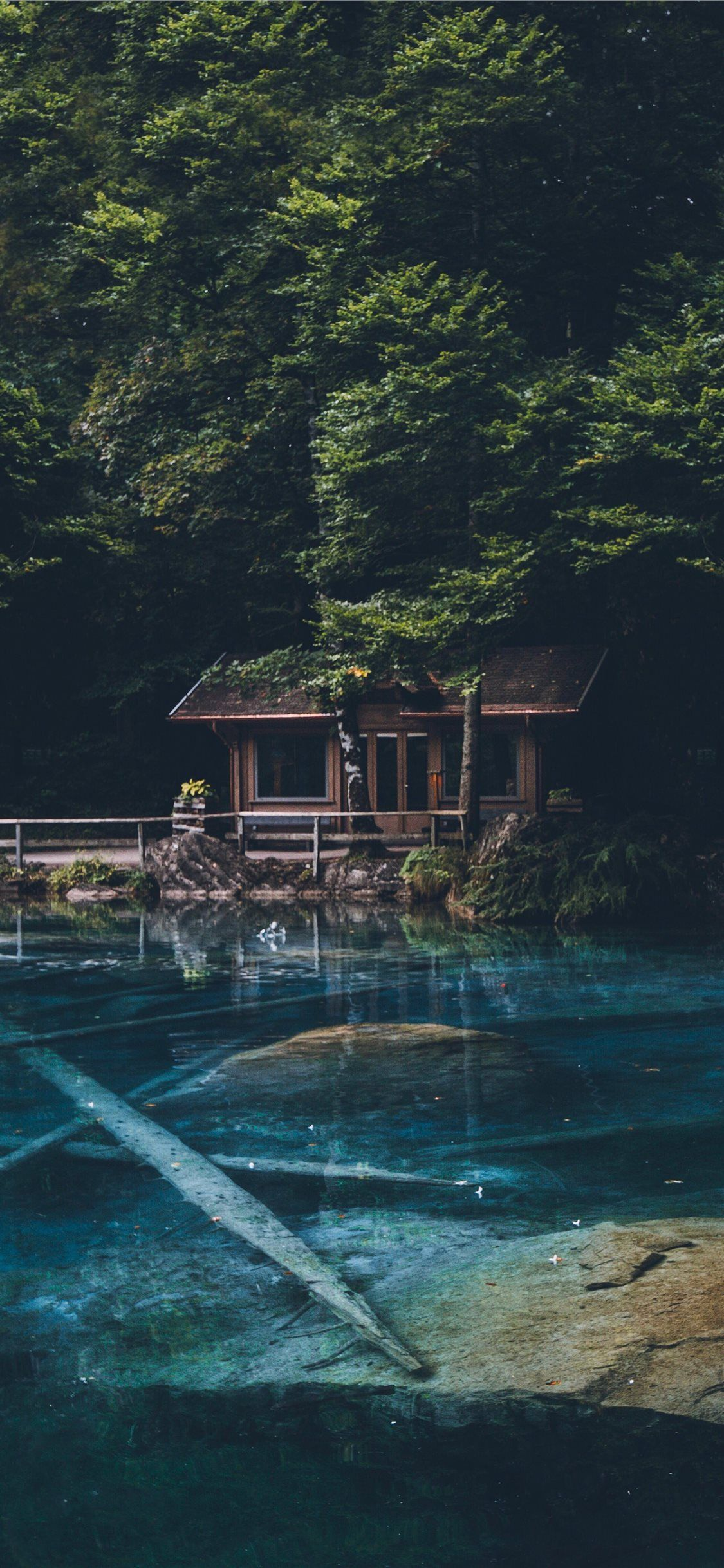 brown wooden house behind green tree nature water tree