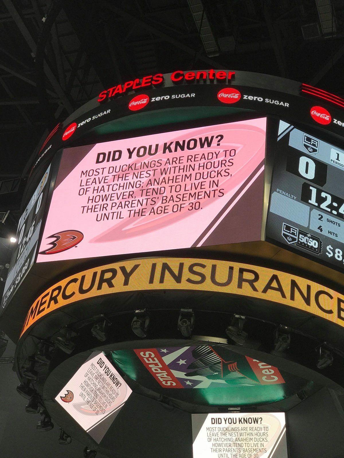 Shots fired   Montreal canadiens hockey, Hockey humor ...