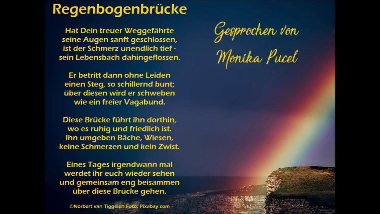 Regenbogenbrücke Regenbogenbrücke Regenbogen Schmerz