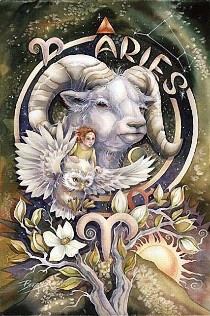 MORNING LIGHT: Jody Bergsma-Zodiac