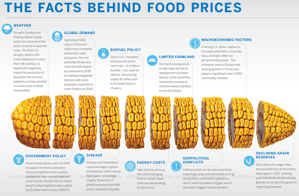Hot 5 Subsurface Irrigation. Food Price Infographic