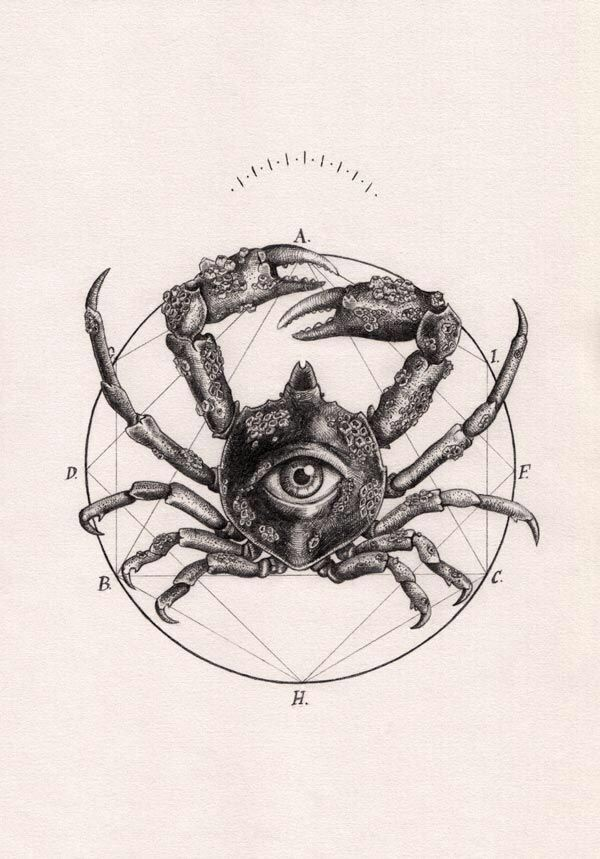 Crab drawing, crab tattoo, crab tatoo, crabe, dessin crabe