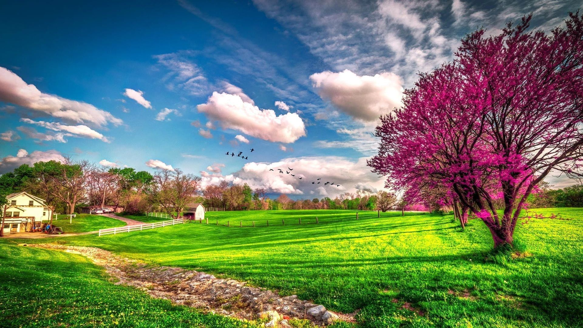 Res 1920x1080 Wallpaper Download Landscape Beautiful Spring Nature Spring Wallpapers Seasons Wall Landscape Wallpaper Spring Landscape Spring Wallpaper