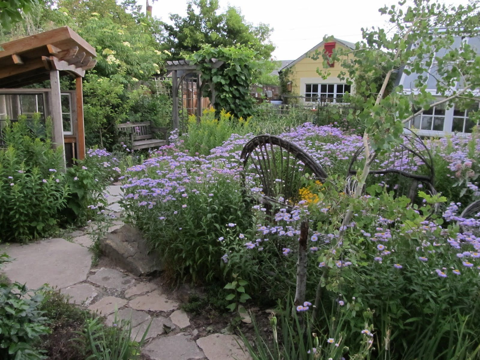 Montana Garden Montana Wildlife Gardener Vegetable Garden Design Garden Design Backyard