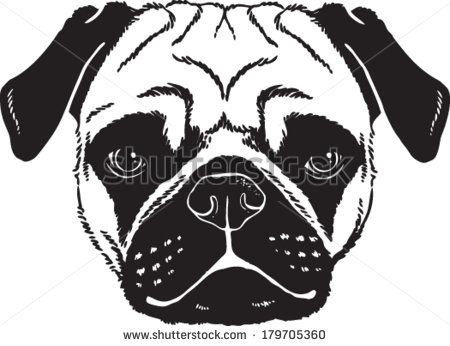 Pug Face Drawing Google Search Zentangle Animals Animal Lover
