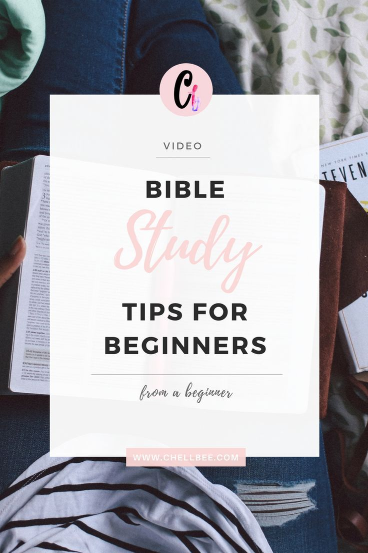 Bible Study Tips for Beginners {from a Beginner}   Bible Study Ideas