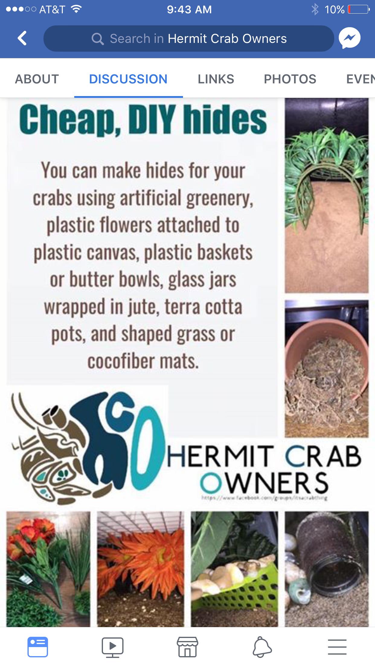 Easy Hermit Crab Hideout Ideas