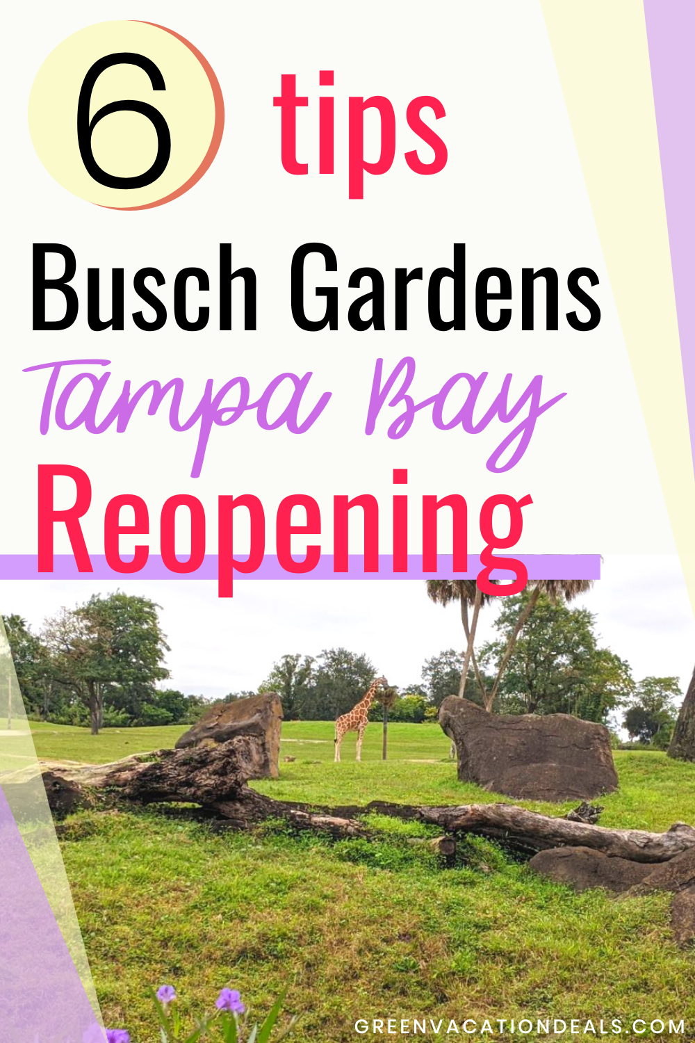 Busch Gardens Tampa Black Friday Deals
