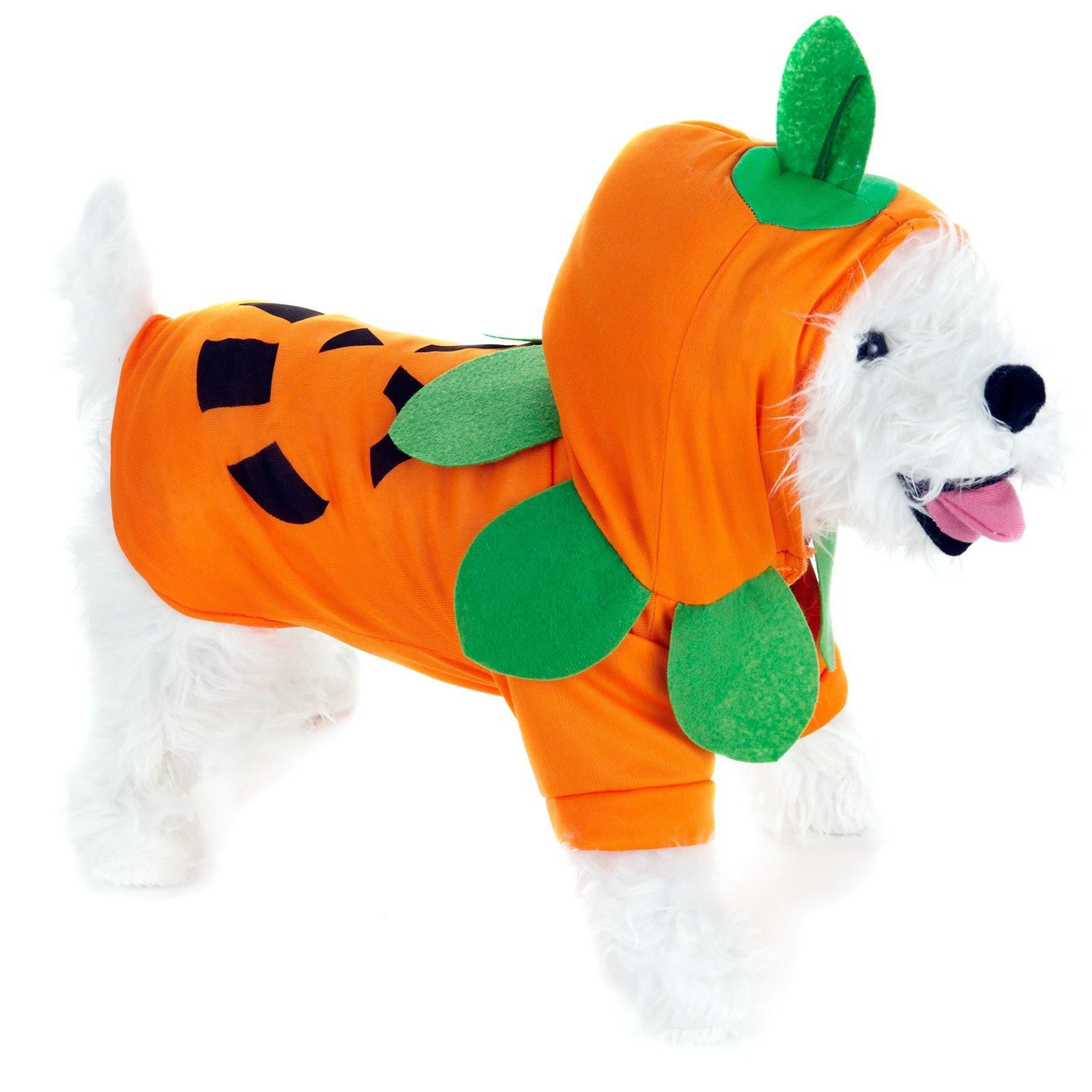 Pumpkin Pooch Dog Costume Pet costumes, Cute dog