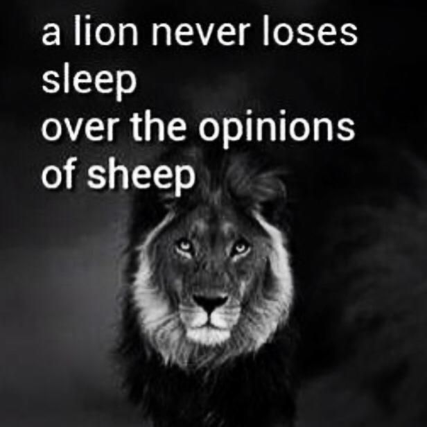 Lions Vs Sheep Motivational Quotessayings Inspirational Quotes