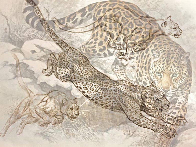 Hermés lança coleção de porcelana inspirada na vida selvagem.