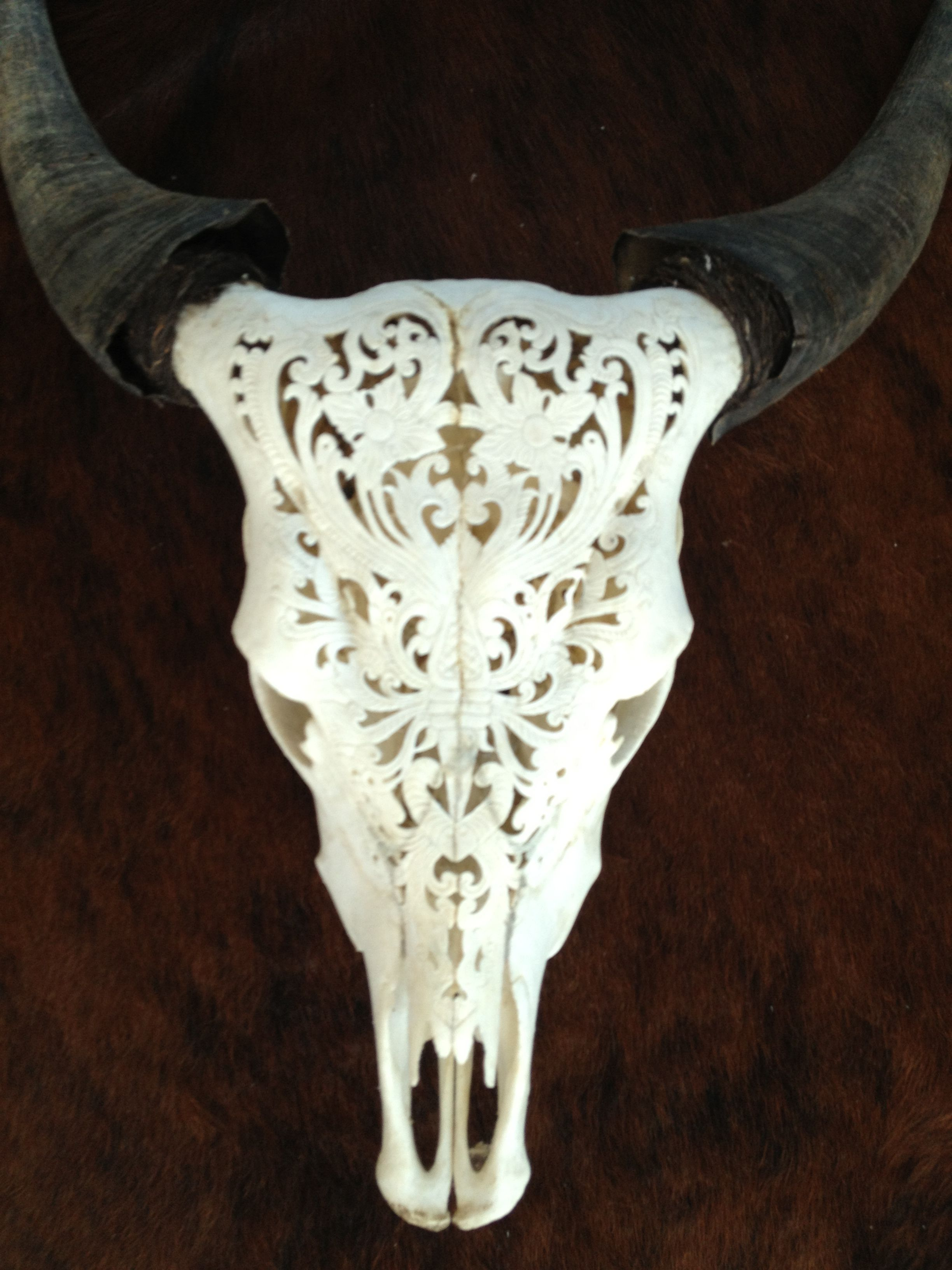 Skulls hand carved cow skull mexican design crafts