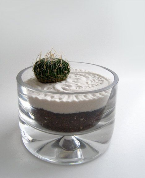 Mini cactus lost in zen 18 check out her etsy awesome terrariums
