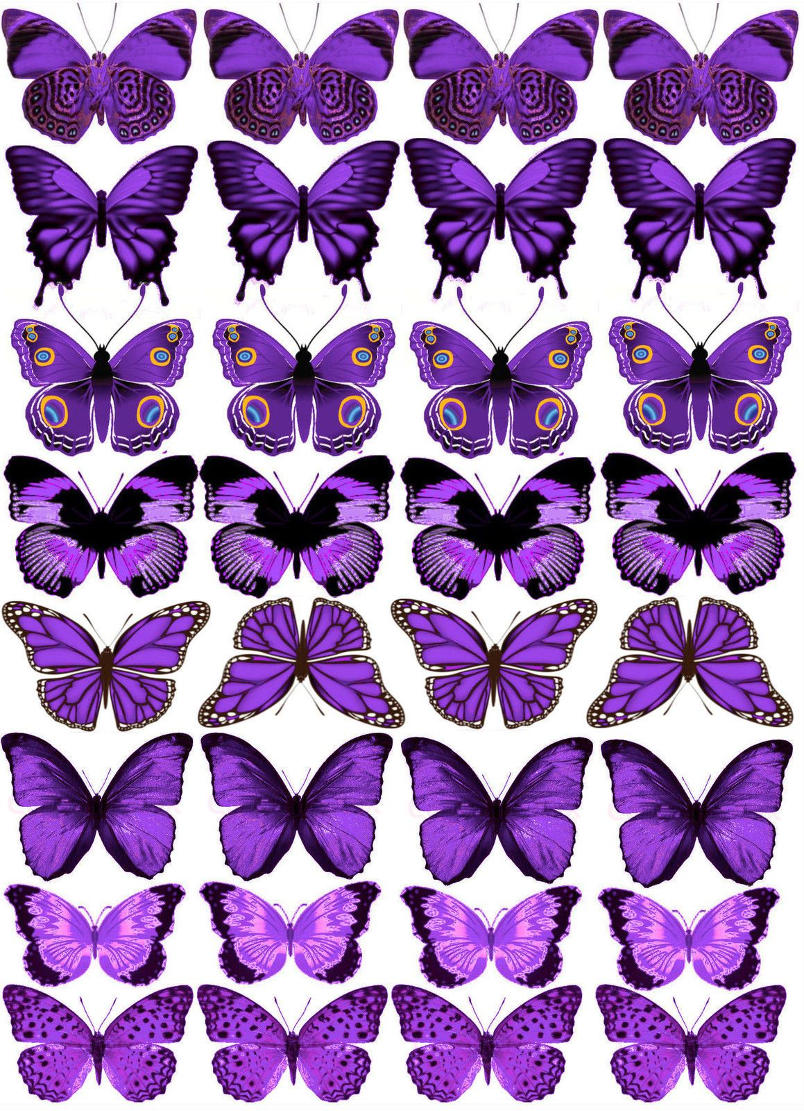 32 mixed stunning purple butterflies various designs