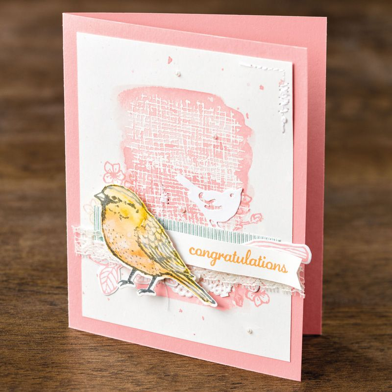 Best Birds Photopolymer Stamp Set by Stampin' Up!