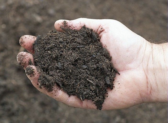 Preparer La Terre De Son Premier Jardin Terreau Potager