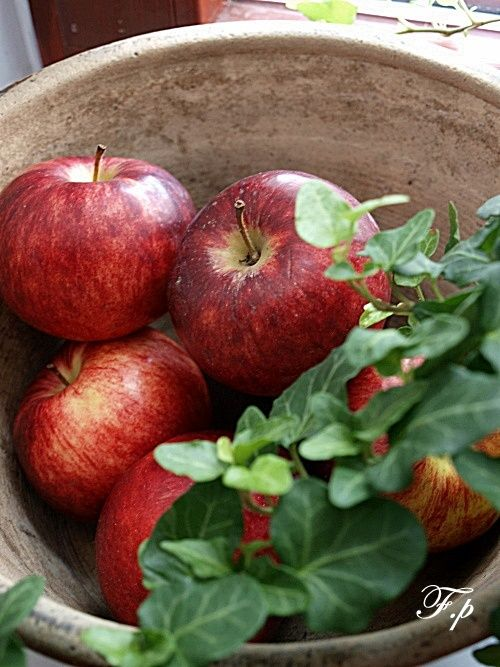 I love apples. I love them in a bowl. I wish I could find