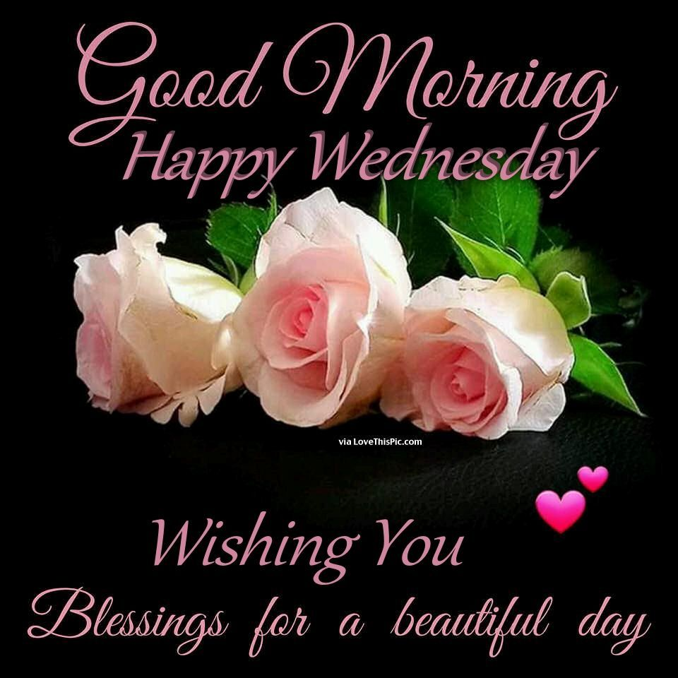 Good Morning Happy Wednesday Wishing You Blessings For A Beautiful