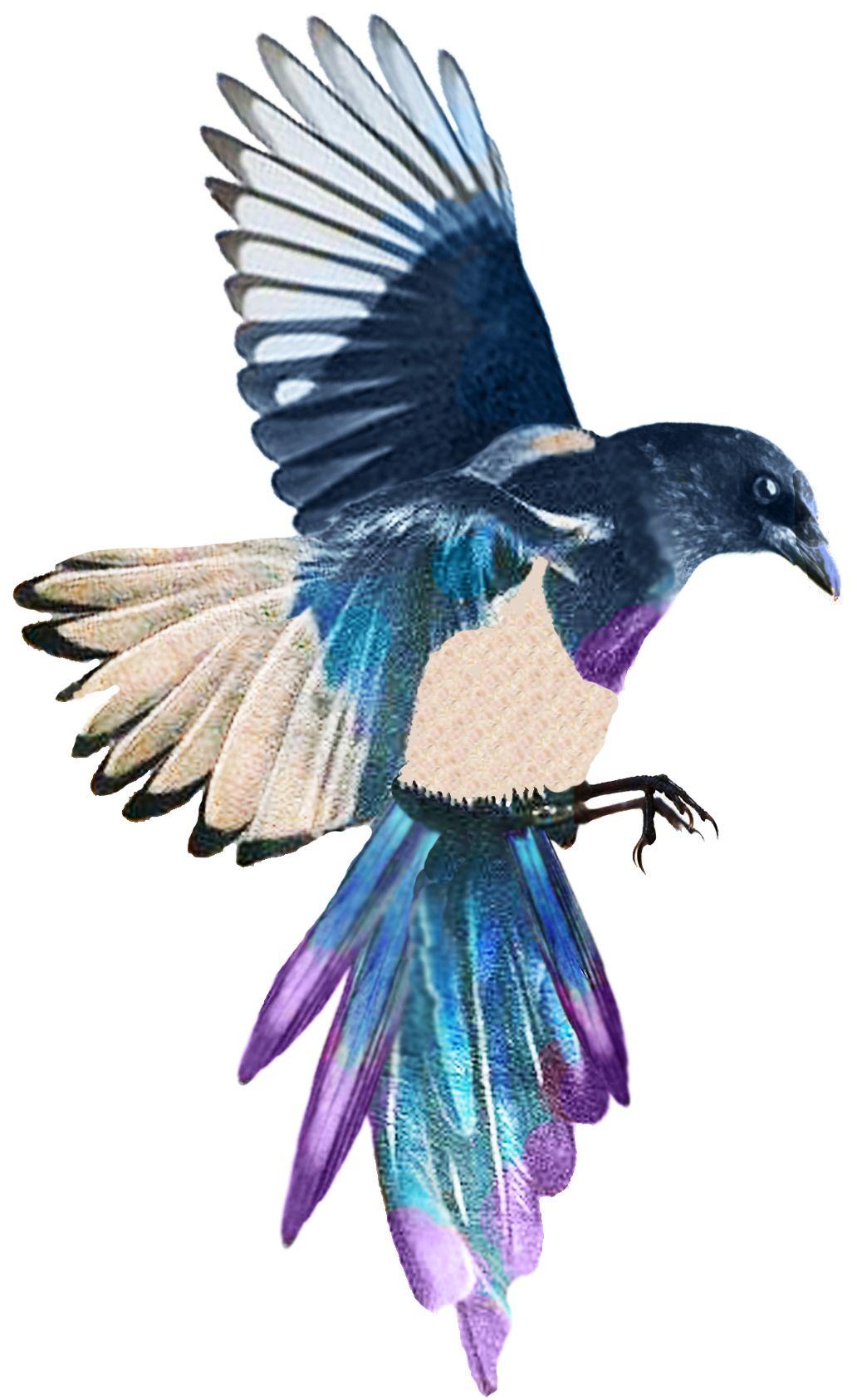 Korean magpie tattoo