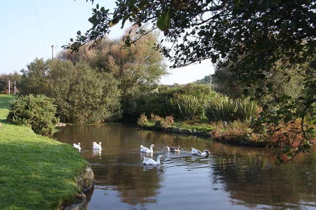 Village Pond, Polgigga by Hugh Venables