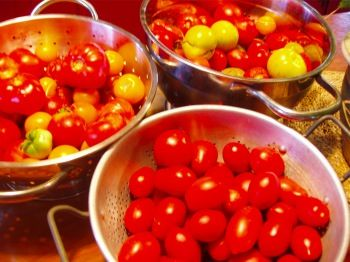 Freezing Tomatoes: 3 Ways to Preserve the Tomato Harvest | Traditional Foods