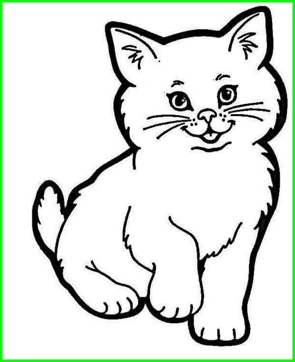 Gambar Kucing Lucu Imut Dan Paling Menggemaskan Sedunia Gambar Hewan Menggambar Kucing Hewan