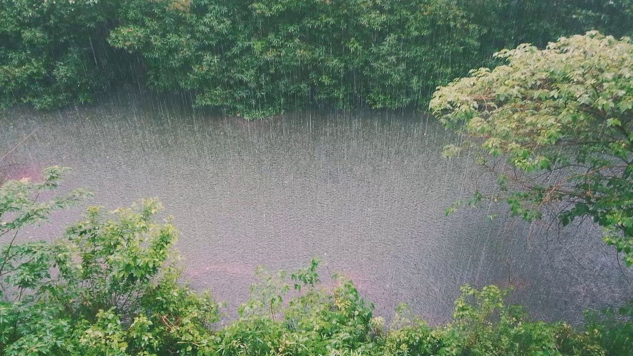 Nature Sound Rain On Tin Roof For Sleeping 6 Hours White