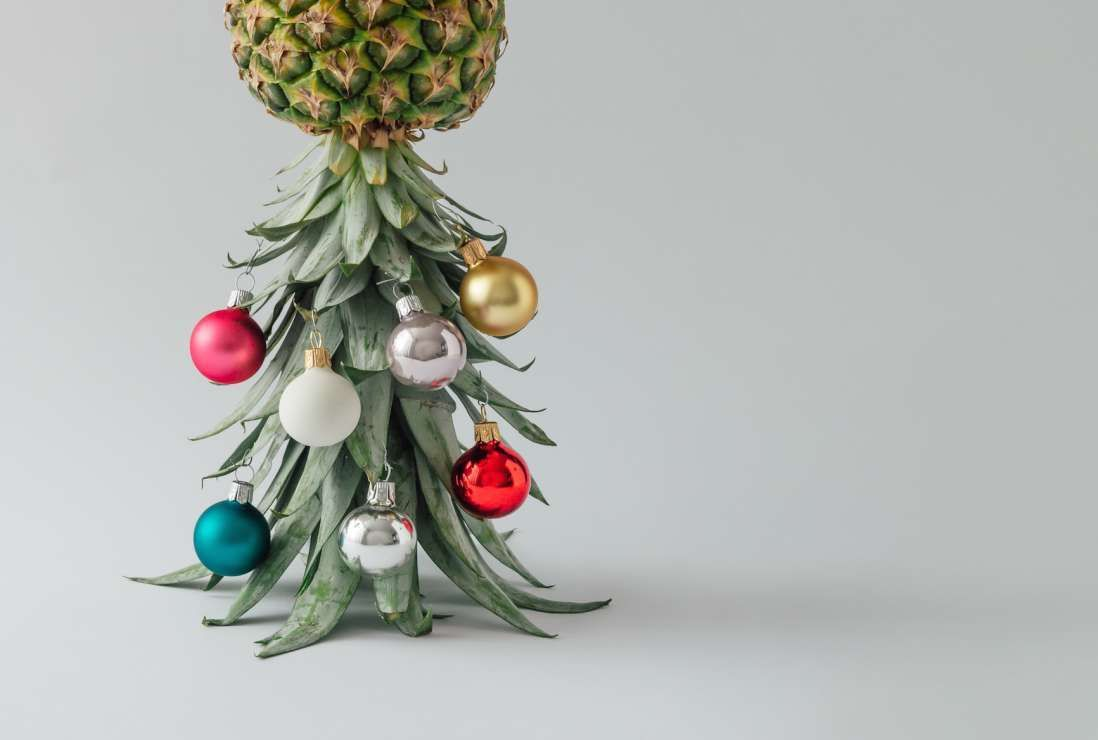 Don\'t Have Space For a Christmas Tree? Decorate a Pineapple Instead ...