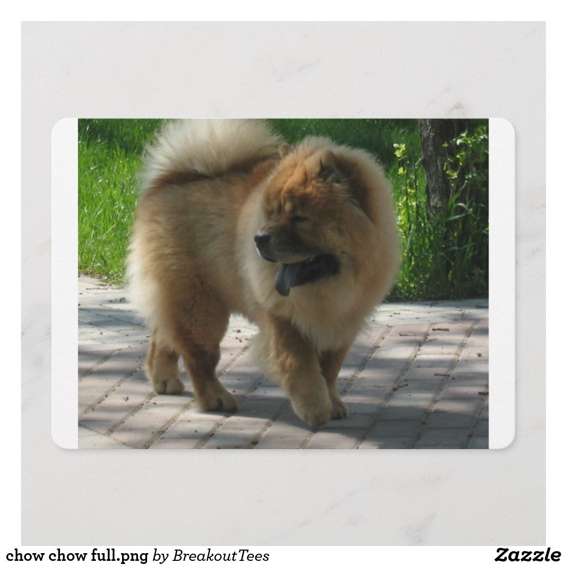 Chow Chow Full Png Zazzle Com Chow Chow Fluffy Dogs Dog Breeds