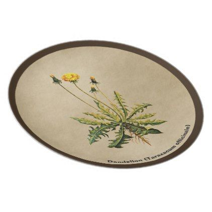 Dandelion On Old Paper Melamine Plate - customize create your own #personalize diy u0026 cyo  sc 1 st  Pinterest & Dandelion On Old Paper Melamine Plate