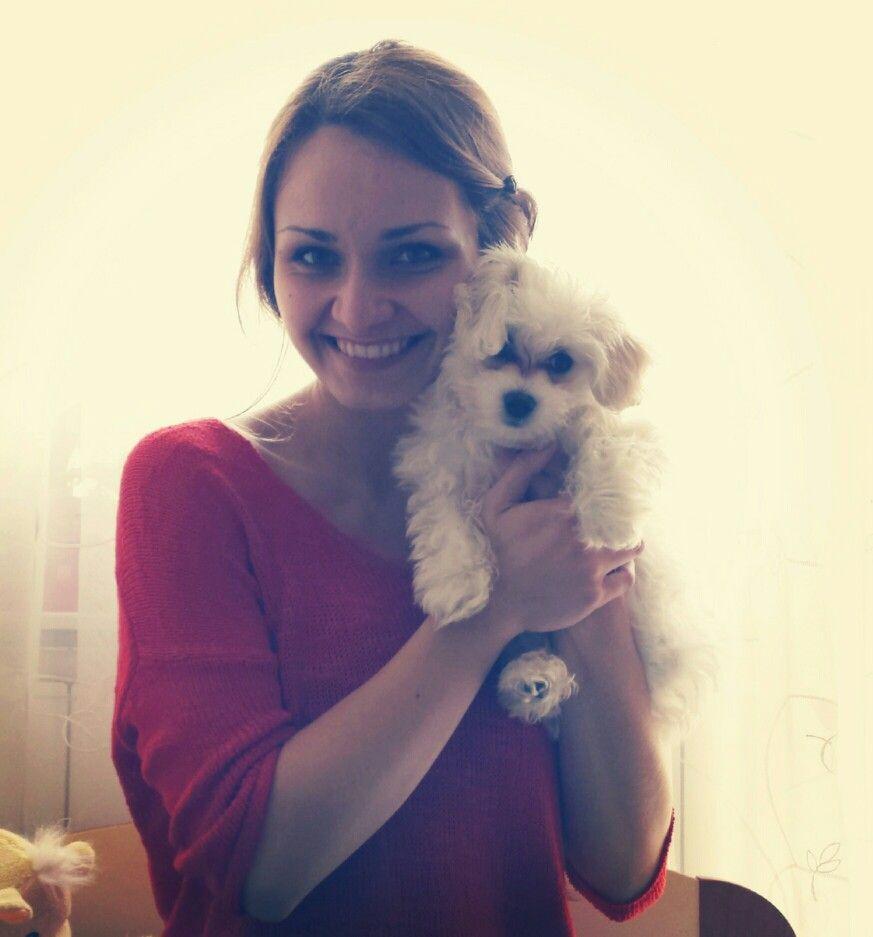 Young maltese puppy :) c.u.t.e.