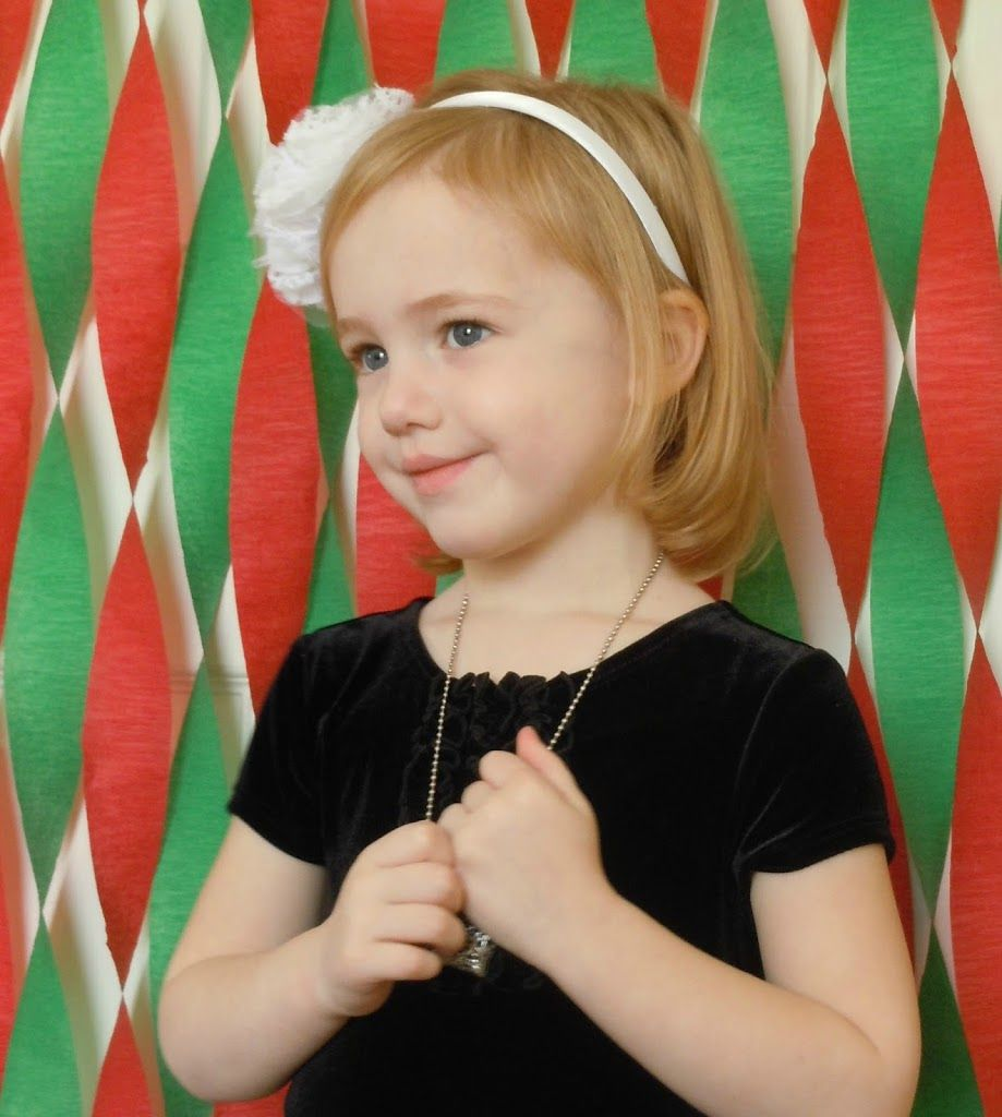 Photo Backdrop Ideas for DIY Holiday Pictures | Christmas party ...