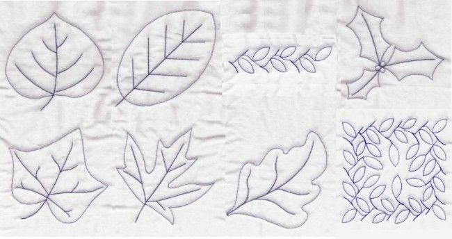 leaves quilting embroidery designs leaf aspen beech holly ivy maple oak stipple Quilts For All ...