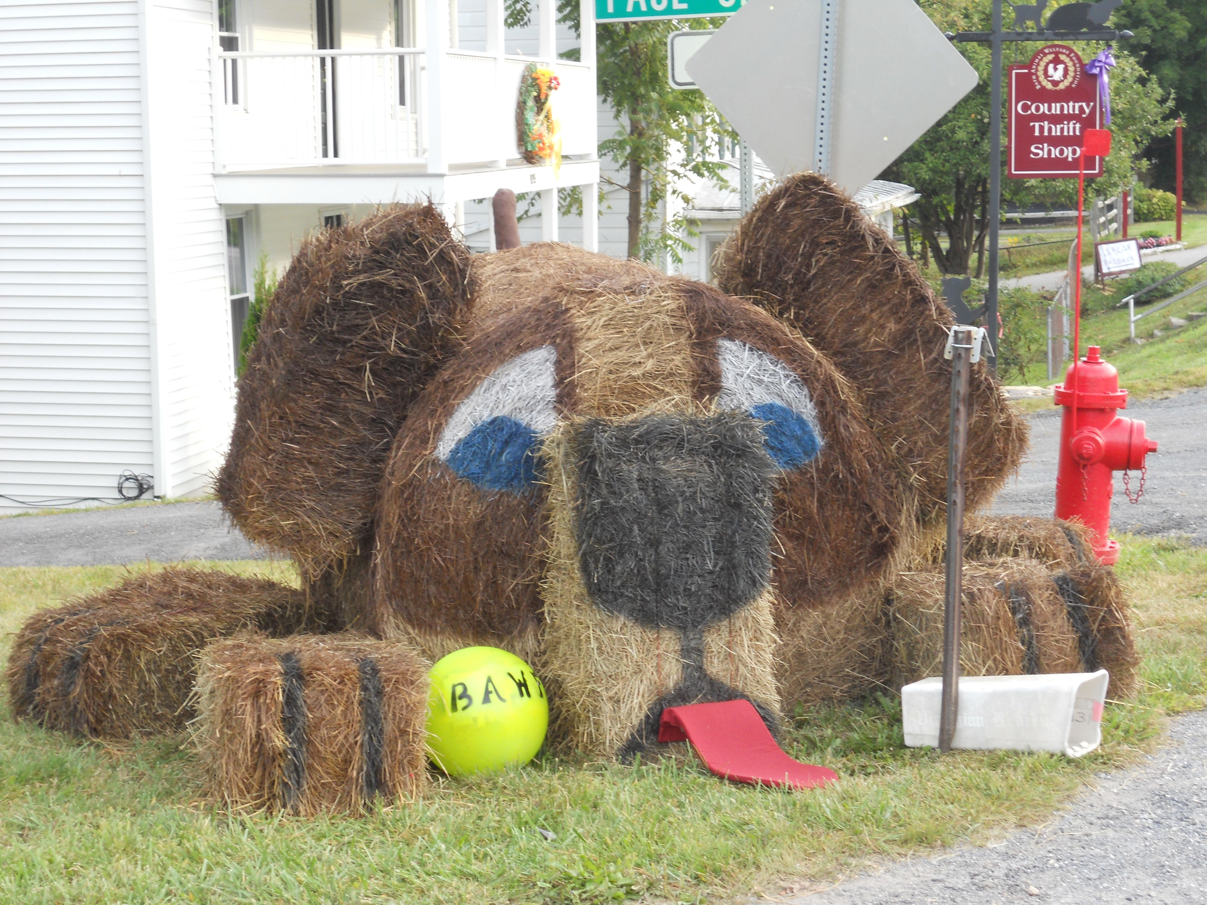 Hay bale decor dog hay bale decoration contest 2012 for Bales of hay for decoration