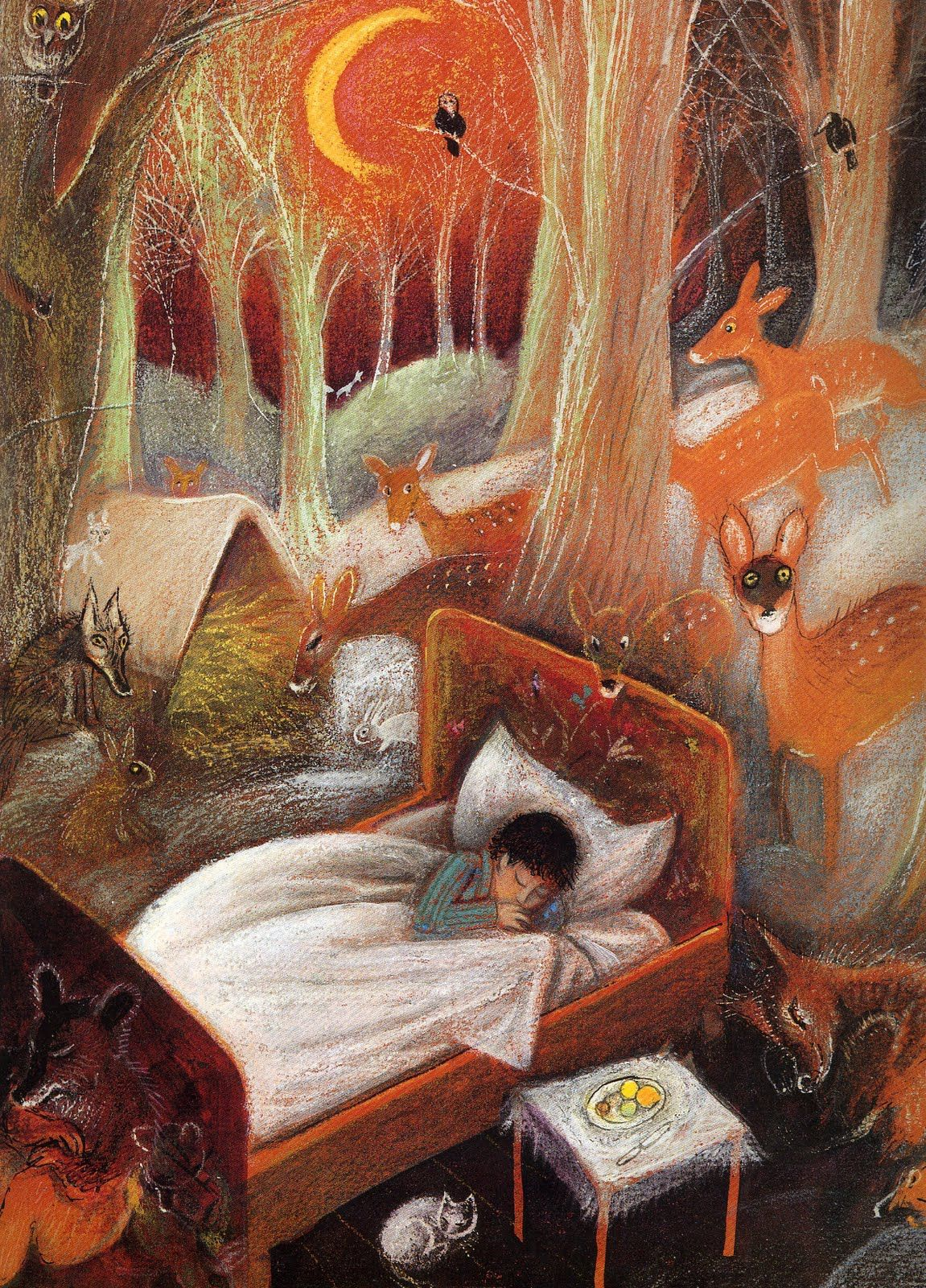 Sweet Illustrated Storytime Illustration Zef