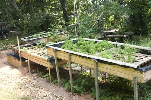 images about Aquaponics on Pinterest Backyards