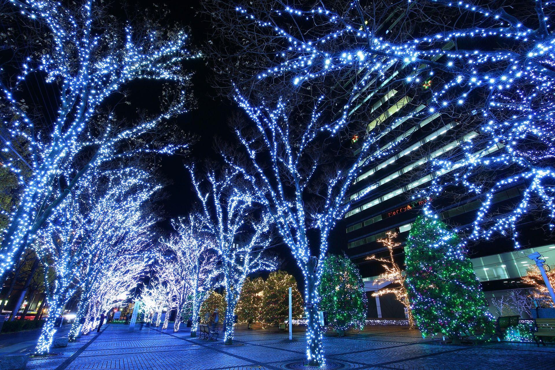 高画質 京セラ本社 イルミネーション 写真 京都 綺麗 イルミネーション 幻想的 京都