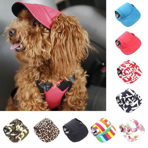 49d05941f70 ... baseball dog cap accessory is now available!