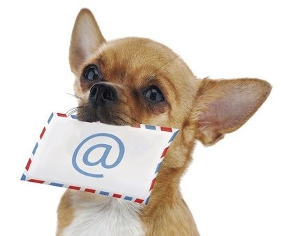Pin On Newsletter Marketing With Email