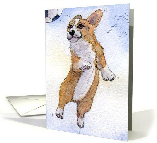 Corgi dog heading football soccer and scoring!!! card (893720) by Susan Alison