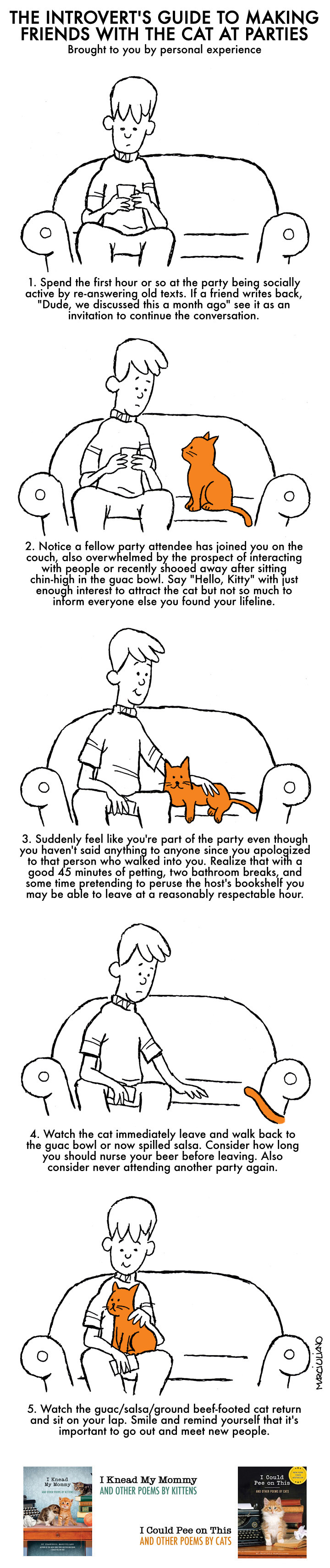 The Introvert's Guide to Making Friends with the Cat at Parties