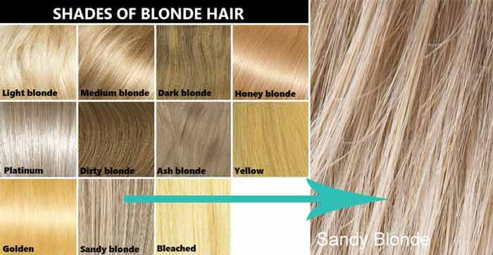 Sandy Blonde Hair Color Dye Blonde Hair Color Sandy Blonde
