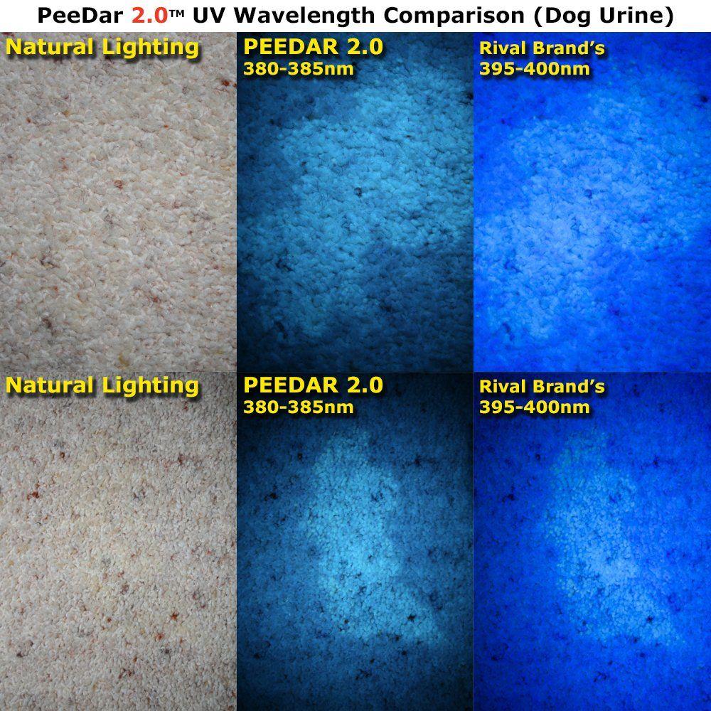 Uv Pet Urine Detector Makes Invisible Urine Glow Peedar 2 0 Pro Trainer Book Aaas 21led 380385nm Black Light Flashlight Find Sta Dog Urine Pet Urine Dog Pee