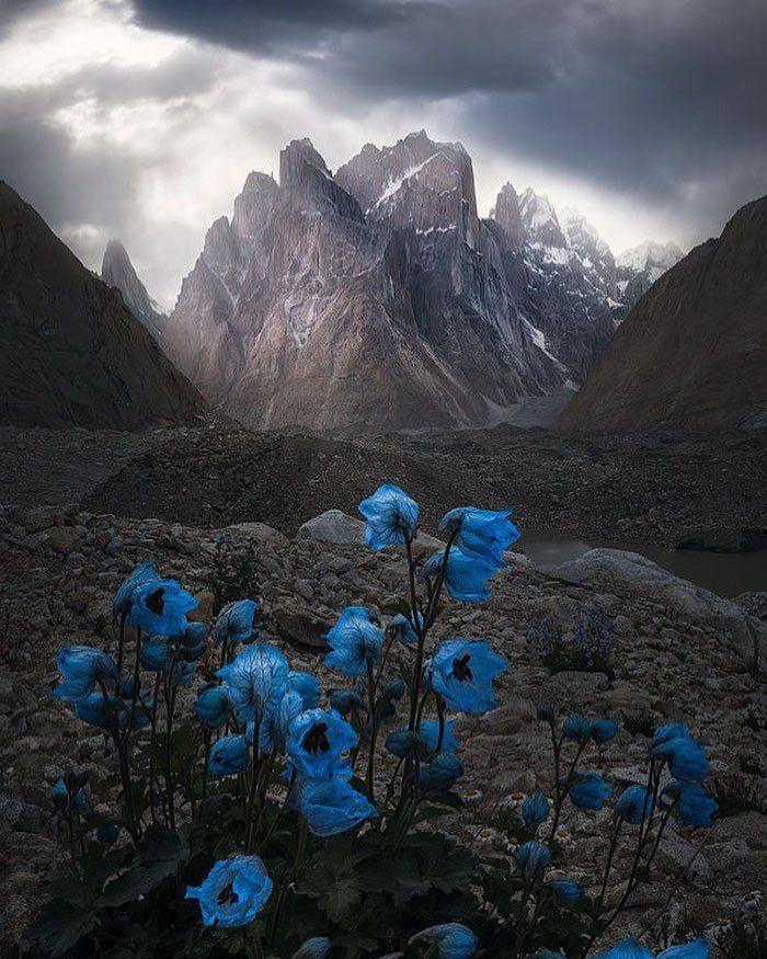 30 de las más impresionantes fotografías de paisajes de 2018