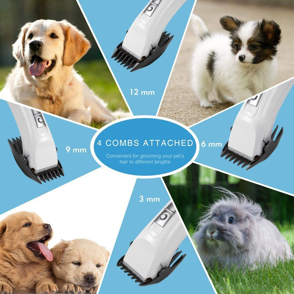 how to groom a golden retriever with electric clippers