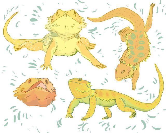 Pin de Scuppy Biggs en Drawings   Pinterest   Bocetos, Color y Mundo