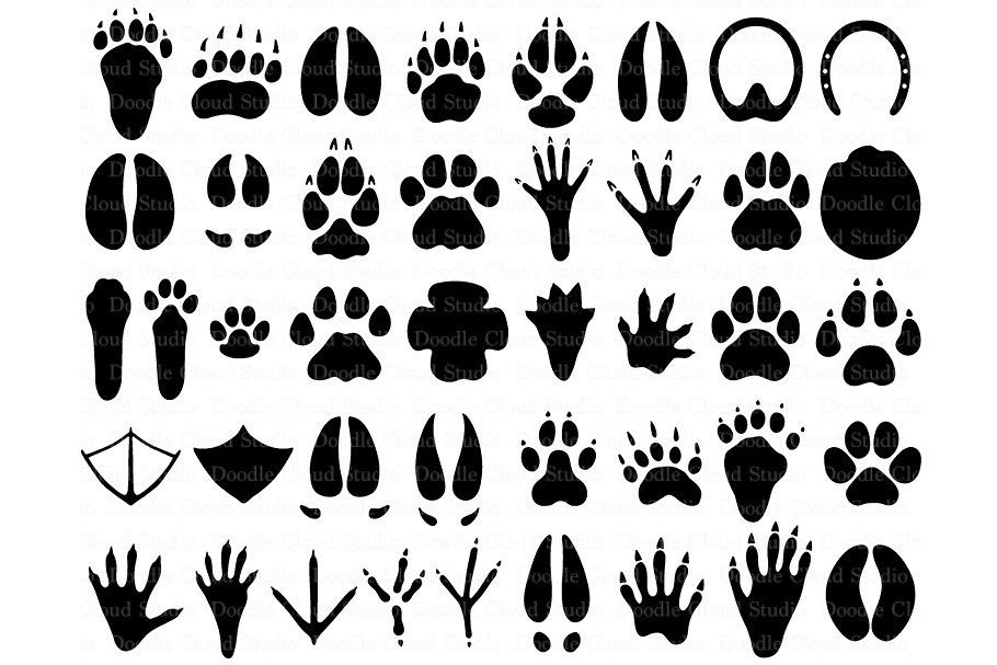 31 Animal Paw Svg Paw Prints Files Animal Tracks Paw Print Clip Art
